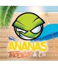 Concentré Ananas Tropical & Co Revolute