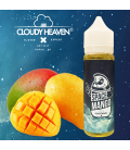 Space Mango Cloudy Heaven ZHC